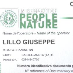tocchidipuglia_certificato